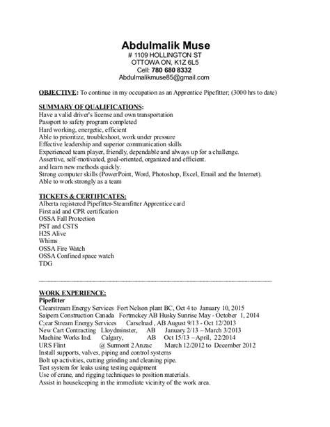 Resume Writing The Muse Abdumalik Muse Pf Resume