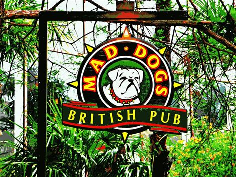 mad dogs san antonio mad pub san antonio photograph by jo sheehan