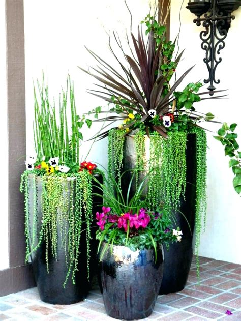 indoor plant design decoration indoor plant design