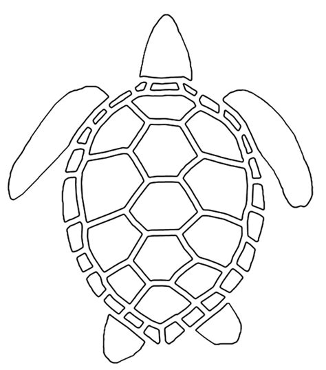 Turtle Outline by Sea Turtle Drawing Outline Www Pixshark Images Galleries With A Bite