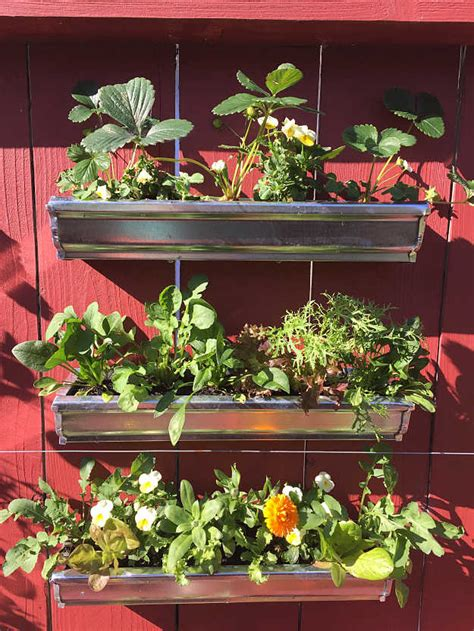 vertical garden ideas how to grow vegetables in a