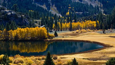 imagenes 4k naturaleza paisaje 4k ultra hd fondo de pantalla and fondo de