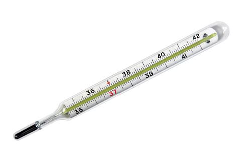 Termometer Hg mercury thermometer ysterplaat supplies