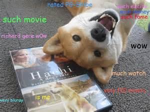 Dog Meme Wow - dog memes wow image memes at relatably com