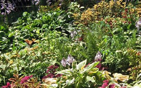 Clark Botanical Garden Clark Botanic Garden