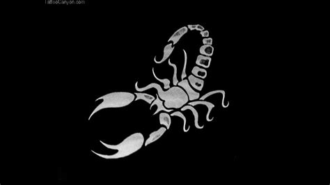 scorpion wallpaper 996564