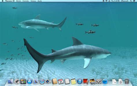 imagenes en 3d con movimiento para descargar descargar gratis fondos de pantalla con movimiento 3d imagui