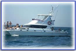 catamaran for hire durban durban boat hire boats for charter and hire