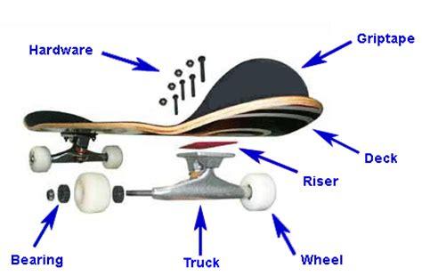 longboard parts diagram storeyourboard skateboard parts anatomy 101 the