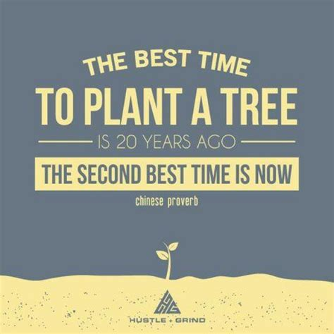 The Best Time To Plant A Tree 9buz When Is The Best Time To Plant A Vegetable Garden