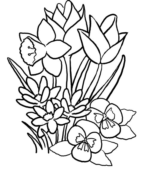 rose flower coloring page 29 flowers coloring pages big