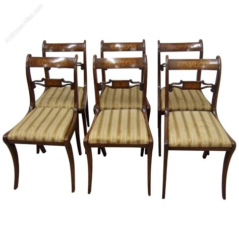 Set Of 6 Dining Chairs Set Of 6 Regency Rosewood Dining Chairs Antiques Atlas