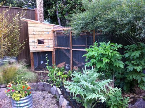 Chicken Garden by Chicken Coop Designs Of All Types
