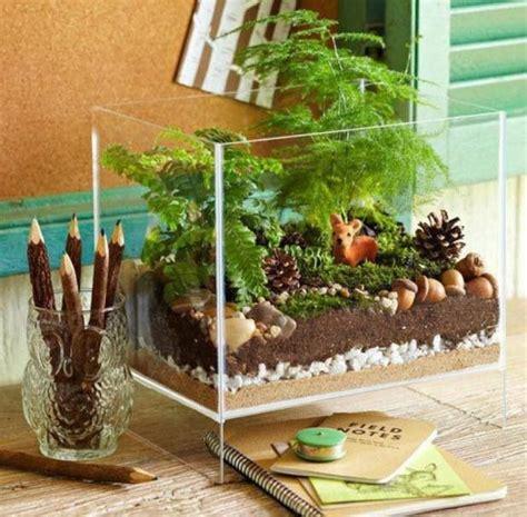 Pot Terrarium Vas Terrarium Aquarium Kaca Mini Garden Miniature 1 an aquarium aquarium aquarium