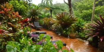 Tropical Plants Melbourne - tropical gardens of hawaii with graham ross ross garden tours