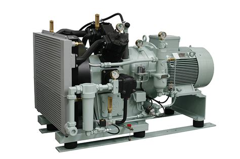 6000 series boosters on sauer compressors usa