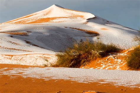 sahara desert snow snow in the sahara desert photos sri lanka news