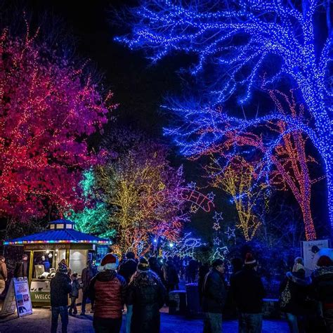 national zoo zoo lights the best light displays events in washington dc