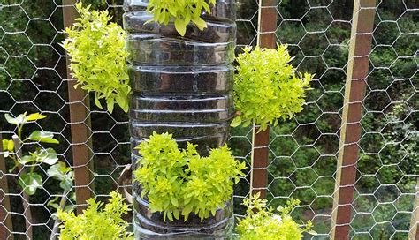 55 best vertical garden ideas planters diy kits