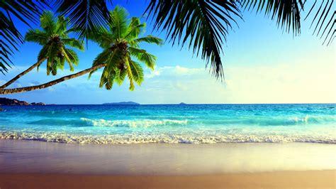 free photo summer beach summer vacation relax free