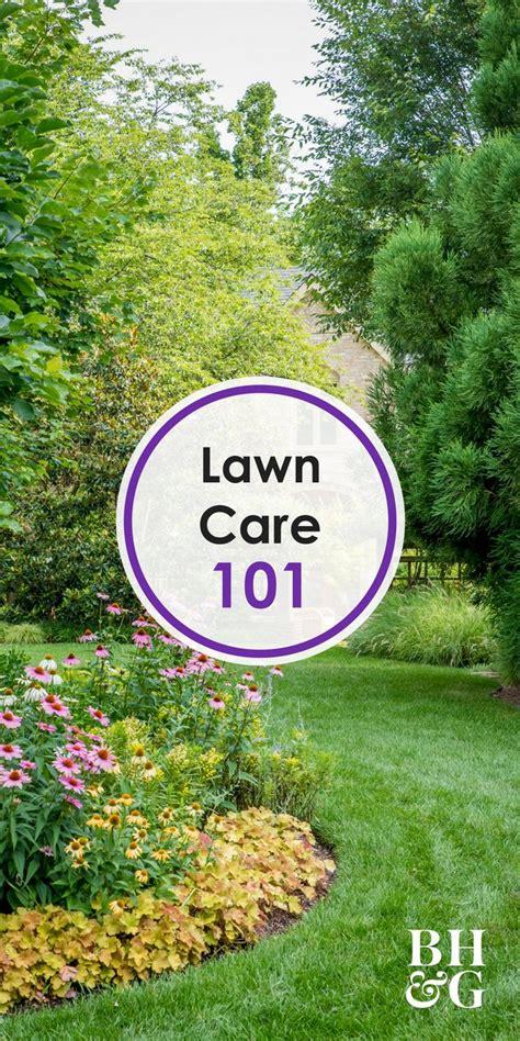 2881 best handy garden plans images on pinterest plants