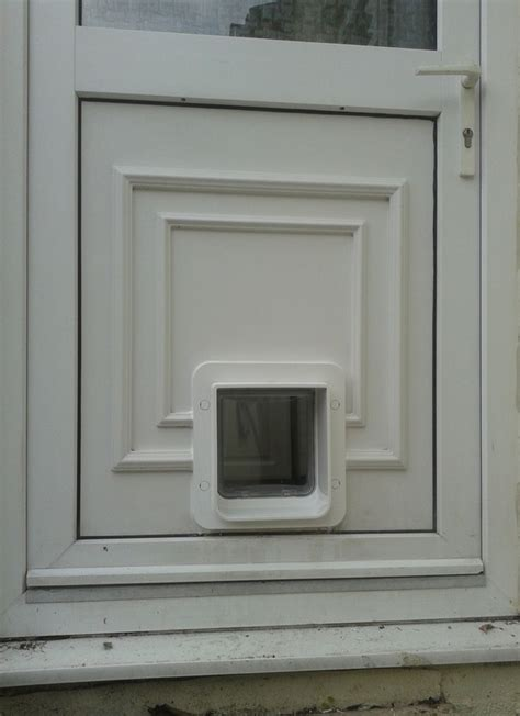 doors with cat flap diy fitting of cat flaps and doors