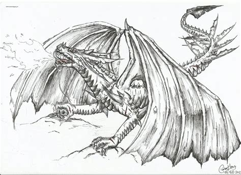 the fire breathing dragon by dino wolf on deviantart
