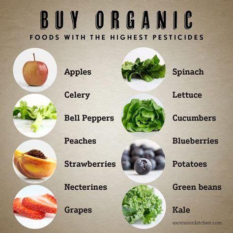 best organic foods plz