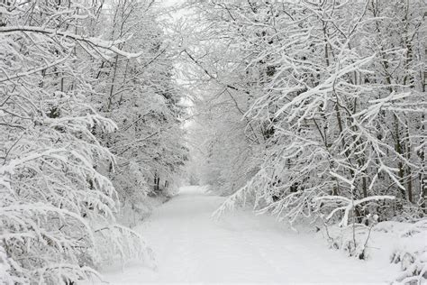 picture of snow beautiful snow wallpapers wallpaper cave