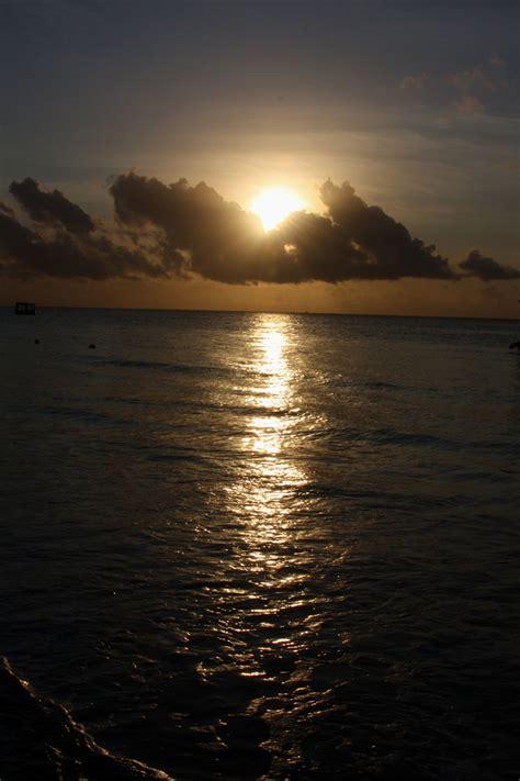 sunrise  stock photo public domain pictures
