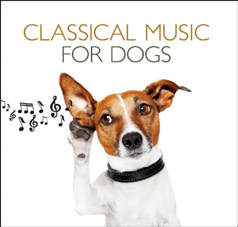 wholetones for dogs classical for dogs 2 cd buy usa quality
