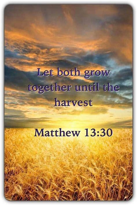 13 best images about matthew 247 best matthew images on scriptures bible verses and scripture verses