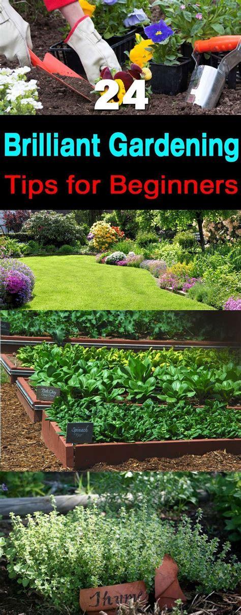 Gardening Ideas For Beginners Best 25 Gardening Ideas On Pinterest Organic Gardening Tips Gardening Tips And Vegetable