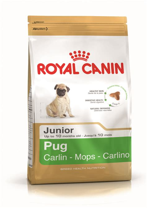 pug diet requirements pug junior food royal canin