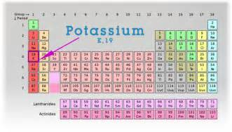 potassium by molly rector