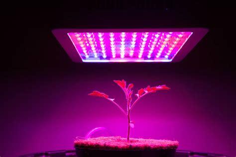 mars hydro  led grow light review