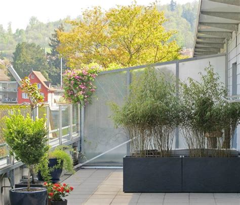 bambus auf dem balkon 4363 kann ich bambus im k 252 bel halten balkon haus garten