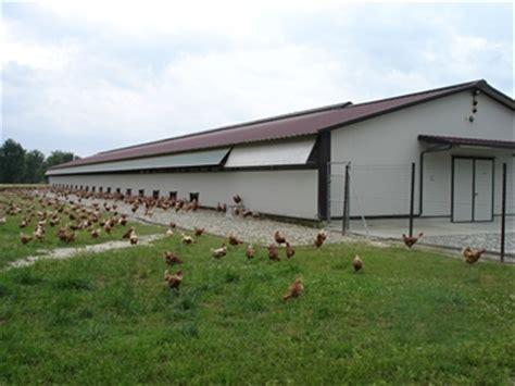 capannoni telonati capannoni per polli impianti avicoli a terra galline pulcini