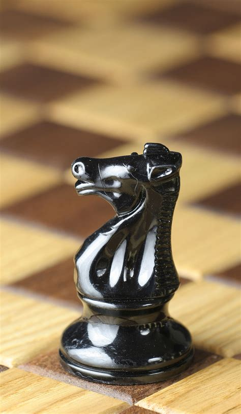 imagenes figurativas estilizadas wikipedia caballo ajedrez wikipedia la enciclopedia libre
