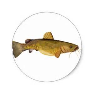 Flat Head Wall Stickers flathead catfish decals flathead stickers