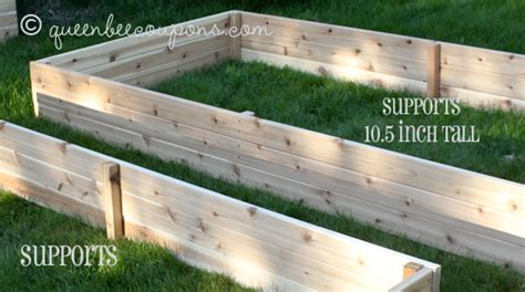 best wood for raised garden beds lovable wood for raised bed garden how to build a raised bed home grown edible