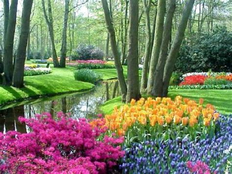 Pretty Flower Gardens Keukenhof Beautiful Flower Garden In Tour Vacation Around The World