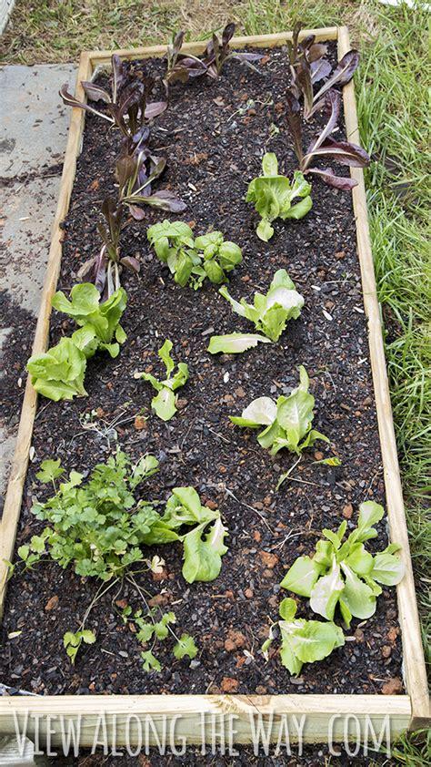 easy raised garden bed easy diy raised garden beds