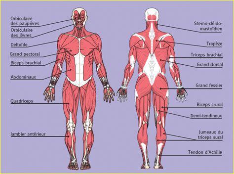 2263054669 le yoga du corps et le fonctionnement du corps humain science corps humain