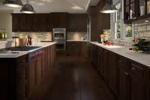 gallery pro kitchen cabinets pro kitchen design dreamline cabinets