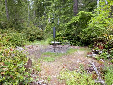 huckleberry hollow backyard wildlife sanctuary