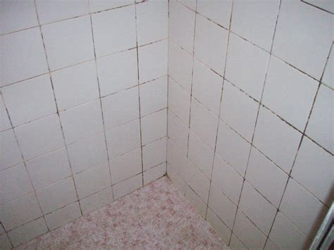 Regrouting Bathroom Tile by Gallery Regrouting