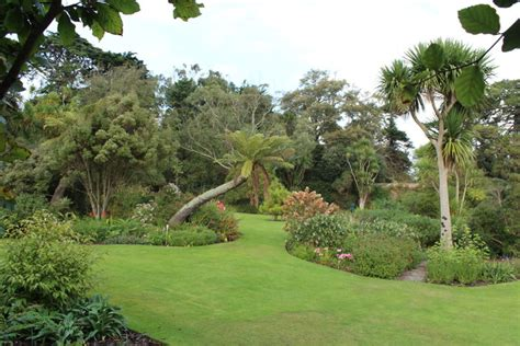 Logan Botanic Gardens Logan Botanic Garden 169 Billy Mccrorie Cc By Sa 2 0 Geograph Britain And Ireland