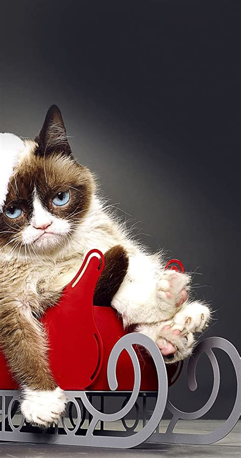 grumpy cats worst christmas  tv