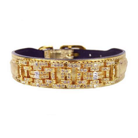 gold collar shop hartman metallic gold leather collar at lowes